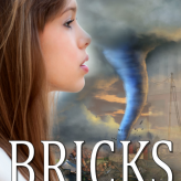 Bricks Trailer
